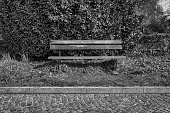 Benches in the grassfield park of Fanal (Madeira, Portugal, Europe)