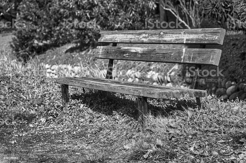One wooden bench on sunny day in Italy, public parkland stock photo