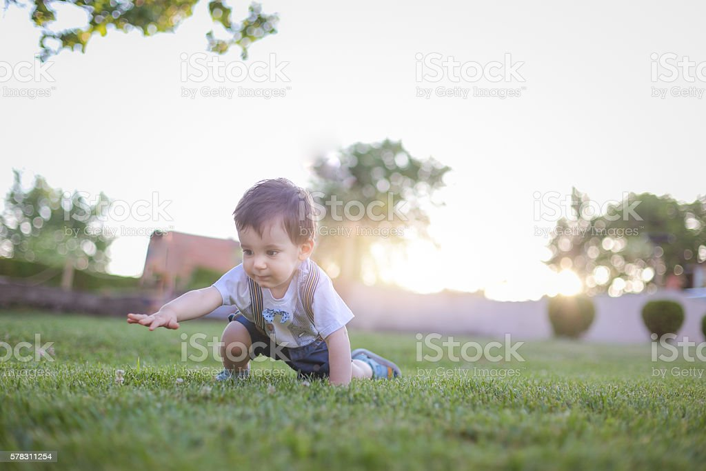one year old is crawling outside on a grass stock photo
