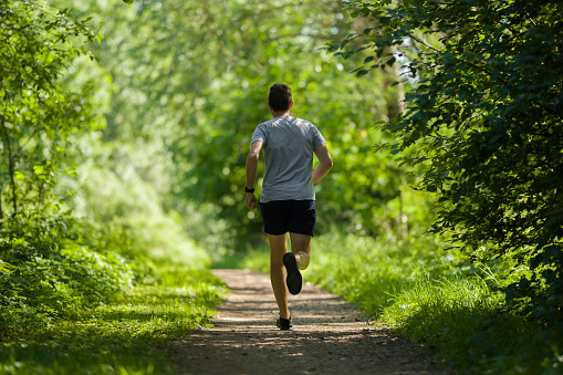 One young, adult man running in forest on natural trail in sunny summer day. Daily active lifestyle. Back view.