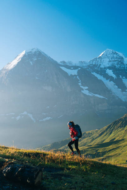 One young female hiker walks up hill Mountains behind, Jungfrau massive swiss alps stock pictures, royalty-free photos & images