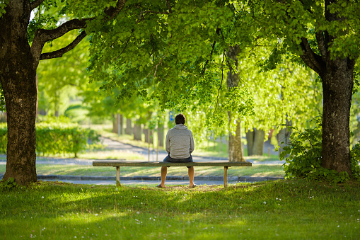 One young man sitting on bench between trees at beautiful green park. Thinking about life. Spending time alone in nature. Peaceful atmosphere. Back view.