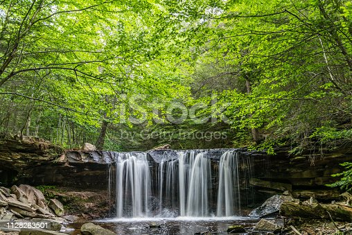 A canopy of green shades the summer waters of Kitchen Creek at Oneida Falls in Ricketts Glen State Park of Pennsylvania.