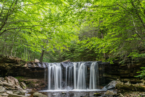 Oneida Waterfall in Ricketts Glen State Park A canopy of green shades the summer waters of Kitchen Creek at Oneida Falls in Ricketts Glen State Park of Pennsylvania. pennsylvania stock pictures, royalty-free photos & images