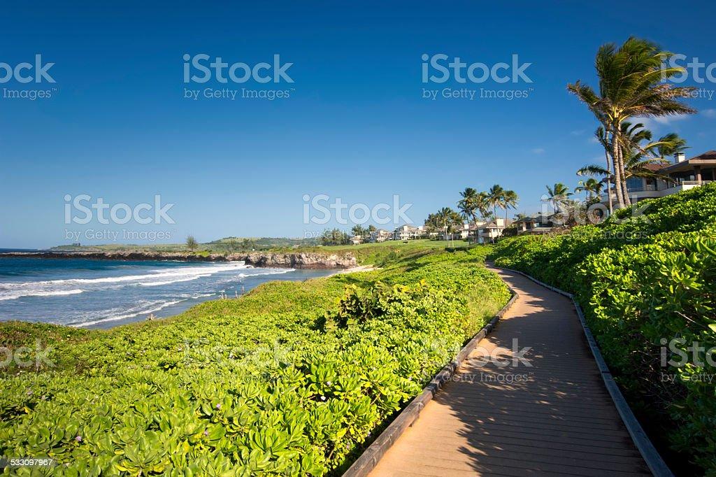 Oneloa or Ironwoods Beach, west coast of Maui, Hawaii stock photo