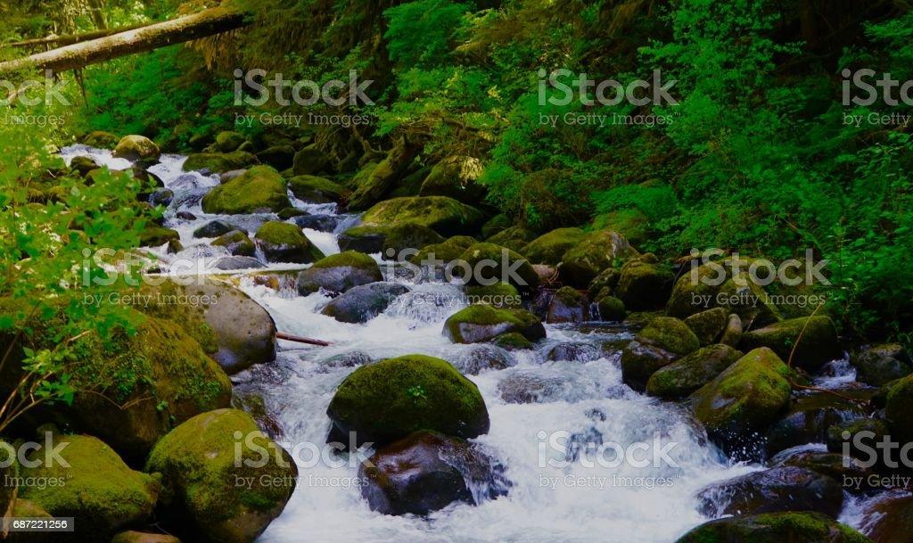 Oneonta Creek Wild stock photo