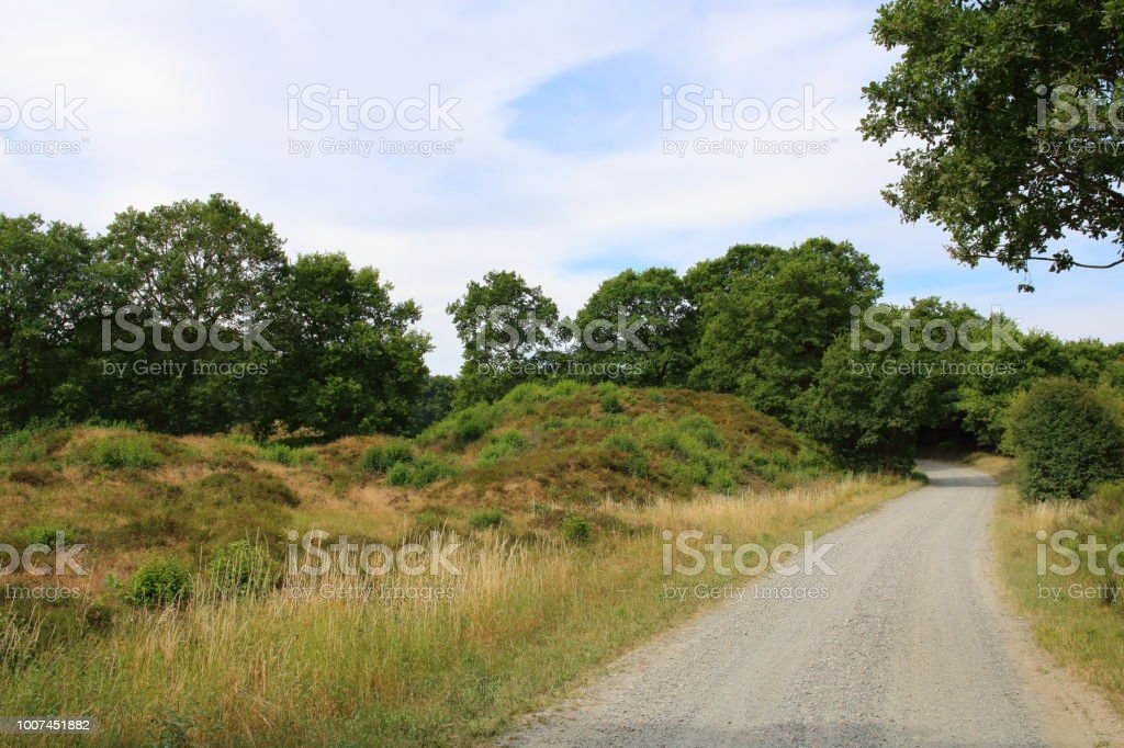 onHærvejen the army road pilgrim route stock photo