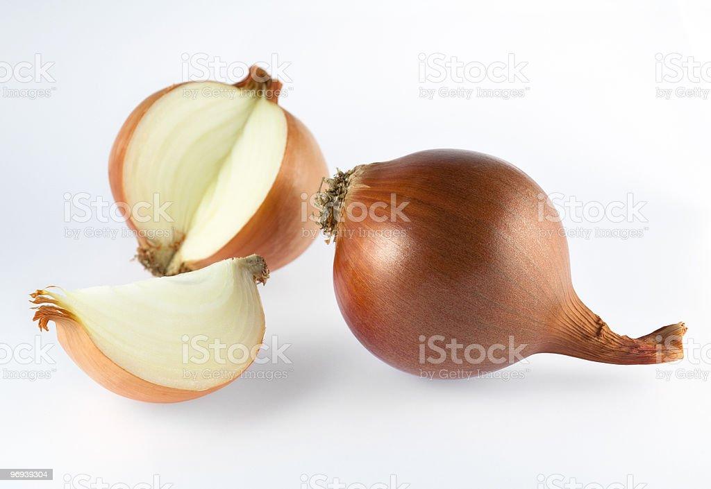 onion 2 royalty-free stock photo