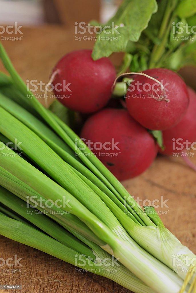 Onion and early radish royalty-free stock photo