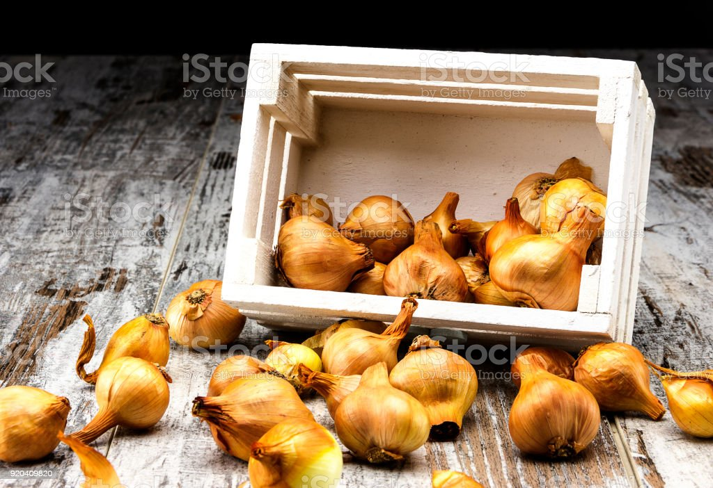 Onion box on rustic table - foto stock