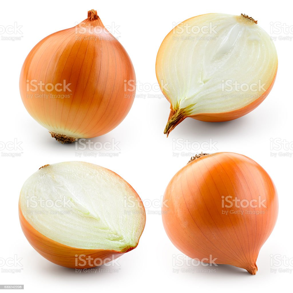 Onion bulb isolated on white. With clipping path. Collection. stock photo