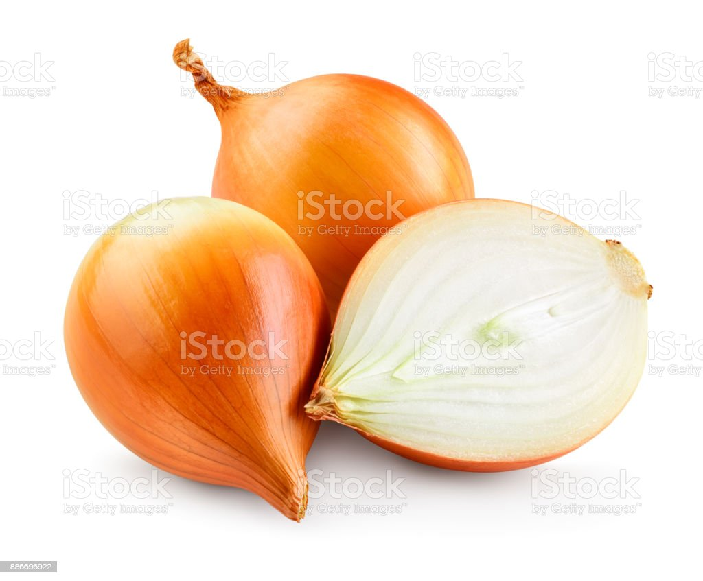 Onion bulbs isolated. Onion on white background. With clipping path. Full depth of field. stock photo