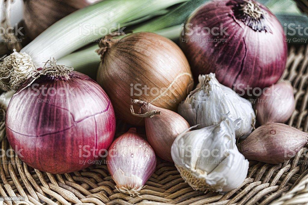 Onion Family - Royalty-free Fotografie Stockfoto