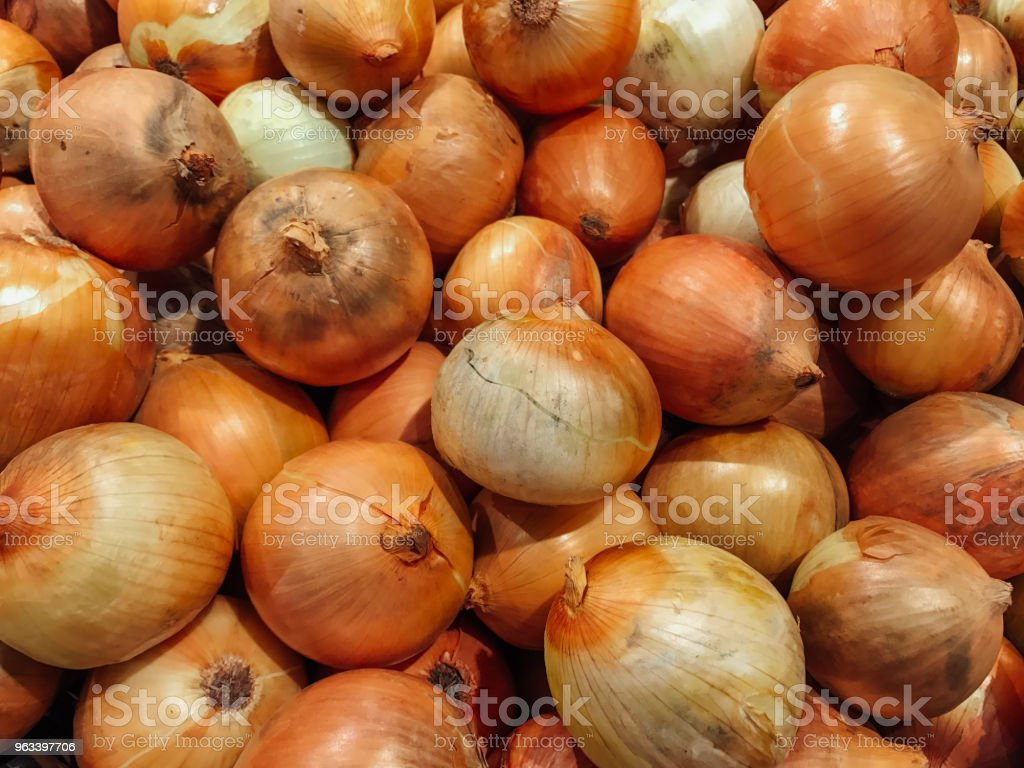 Onion for Background - Zbiór zdjęć royalty-free (Bez ludzi)