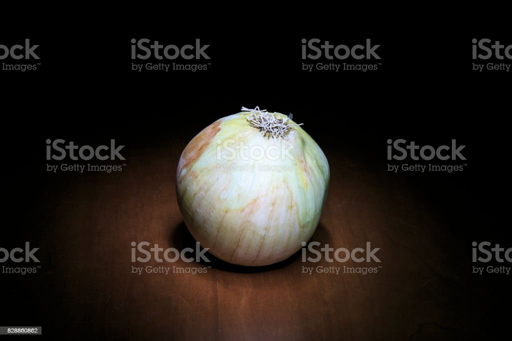 onion isolated on the shadow stock photo