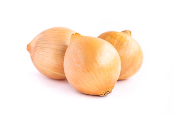 Onion isolated on white background. stock photo