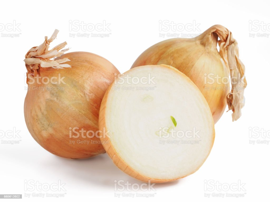 Onion isolated on white stock photo