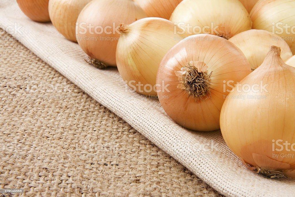 onion on sack background royalty-free stock photo