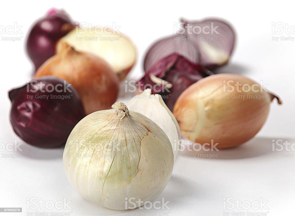 Onion on white royalty-free stock photo