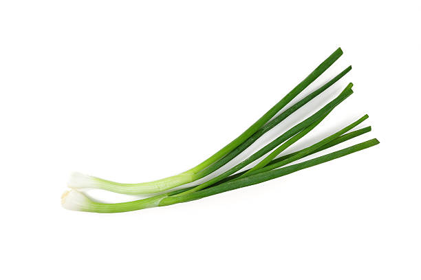 onion - bosui stockfoto's en -beelden