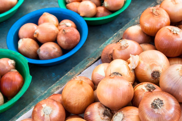 onion - onion juice stock photos and pictures