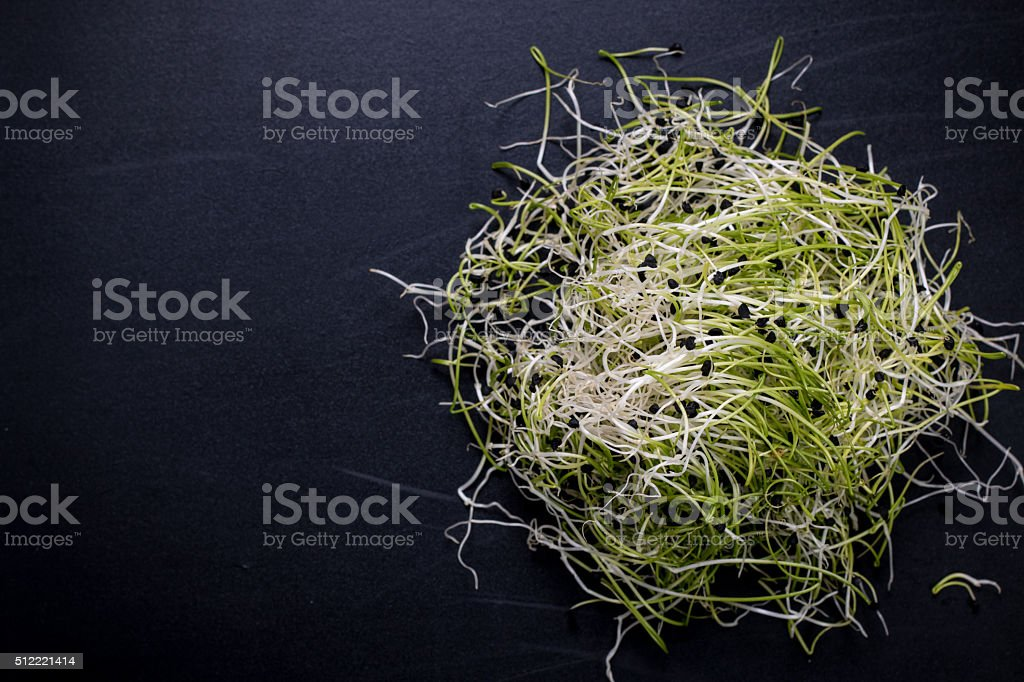 Onion sprouts,healthy  food concept on wooden bacground stock photo