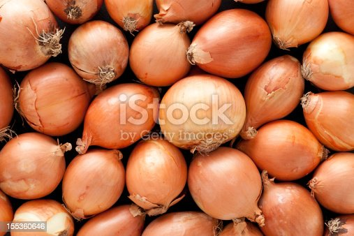 A top view of a layer of yellow onions.  The onions have brown skins.  They are arranged randomly.  The medium sized onions fill the horizontal frame.  This vegetable background shows healthy unbruised onions.  Some onions are round while others are oval.