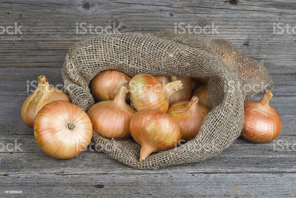 Onions on burlap sack royalty-free stock photo