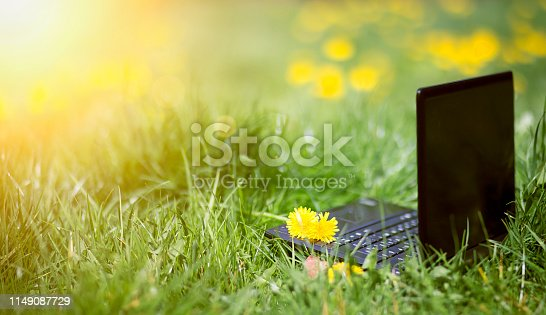 istock Online learning, e-learning summer concept, laptop in the grass 1149087729