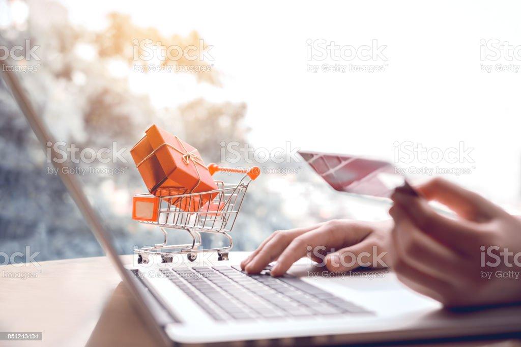4df29d5c195e2f Online-shopping-Konzept mit Frau Hand mit Laptop und Kauf Auftragsprodukt  Kreditkarte suchen.