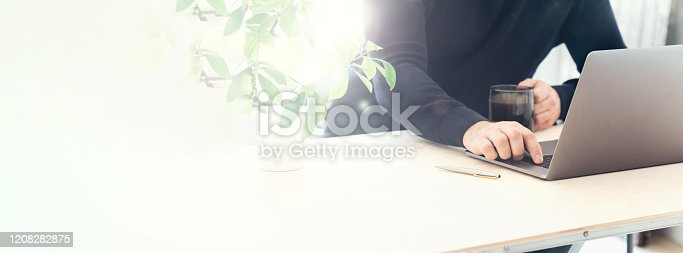 Online training concept. Professional blogger looking at computer. Copy space