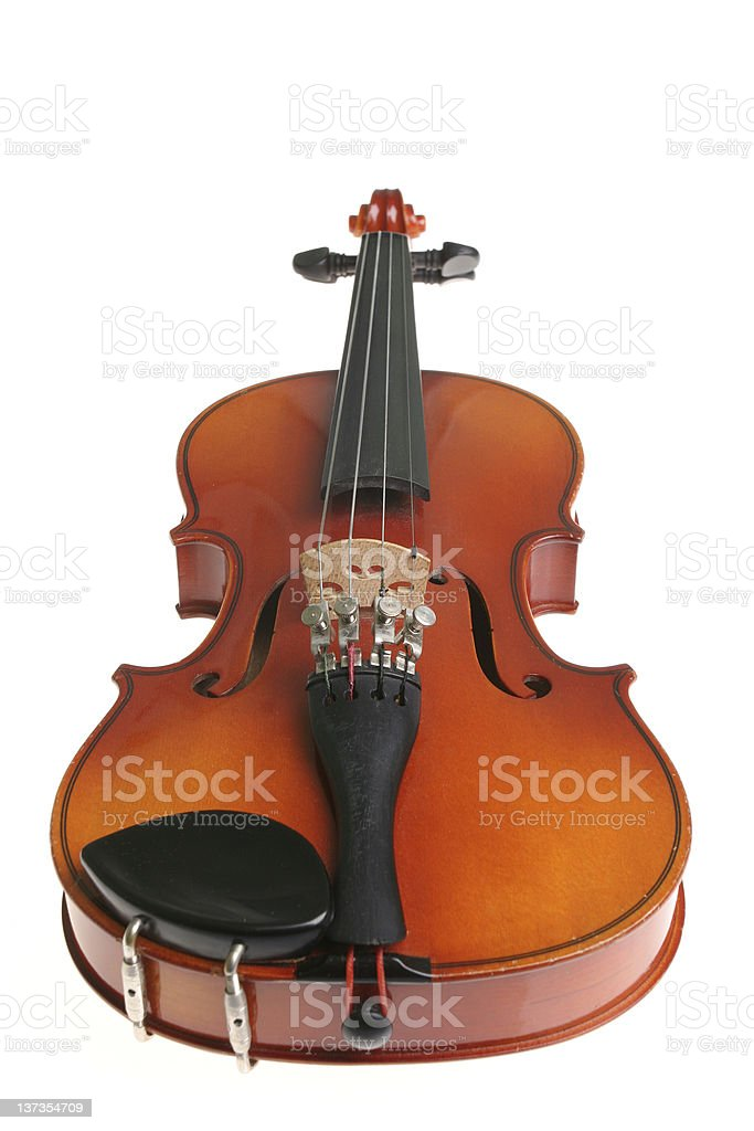 Only violin royalty-free stock photo