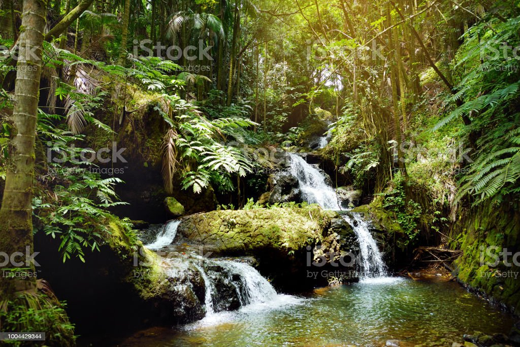 Onomea Falls located in Hawaii Tropical Botanical Garden on the Big Island of Hawaii stock photo