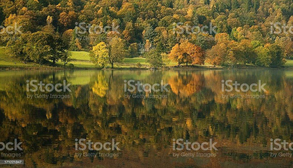 Onset of autumn III stock photo