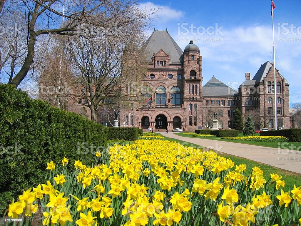 Ontario Parliament with daffodils stock photo
