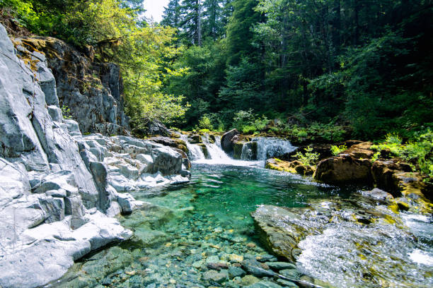 águas da esmeralda da angra de opal - água doce - fotografias e filmes do acervo