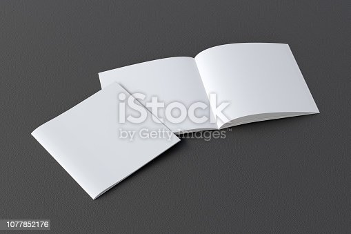 887572514istockphoto Open and closed  blank booklet 1077852176