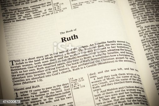 Open Bible ,The Book of Ruth