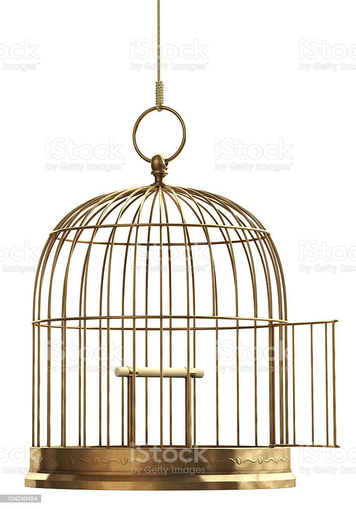 Open Bird Cage stock photo