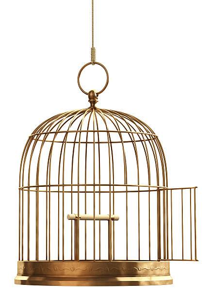 open bird cage - kooi stockfoto's en -beelden