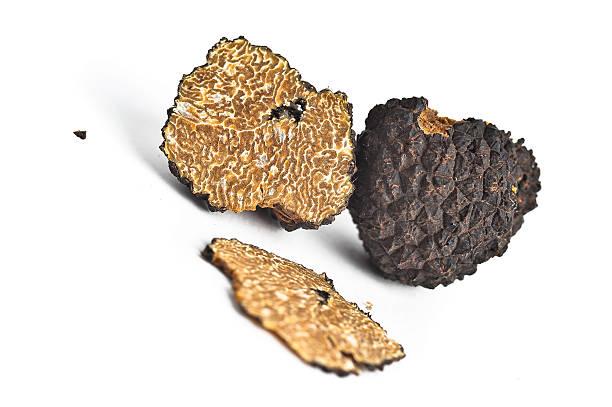 Open Black Truffle stock photo