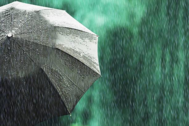 otwórz czarny parasol przy deszczowej pogodzie. jesienny deszcz. głęboki smutek. mokry parasol na tle ulicy. smutny nastrój. deszcz w mieście. ulewny deszcz na letnim zielonym tle. poczuj smutek i smutek - deszcz zdjęcia i obrazy z banku zdjęć