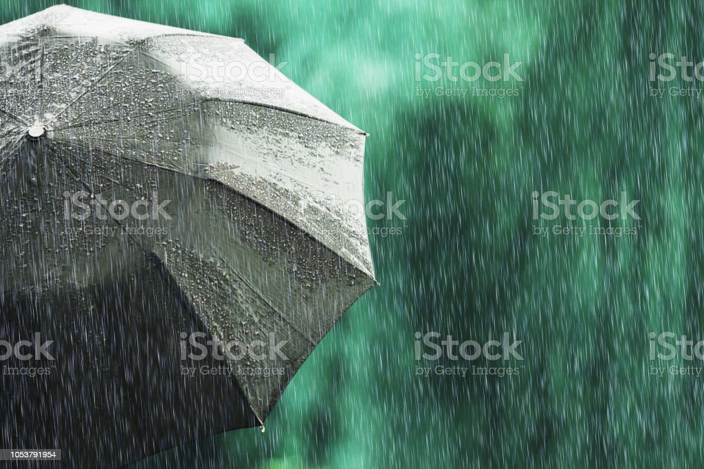 Paraguas negro abierto en tiempo mojado. Lluvia de otoño. Profunda tristeza. Mojada del paraguas contra el telón de fondo de la calle. Estado de ánimo triste. Lloviendo en la ciudad. Fuerte lluvia sobre fondo verde del verano. Siento pena y tristeza - foto de stock