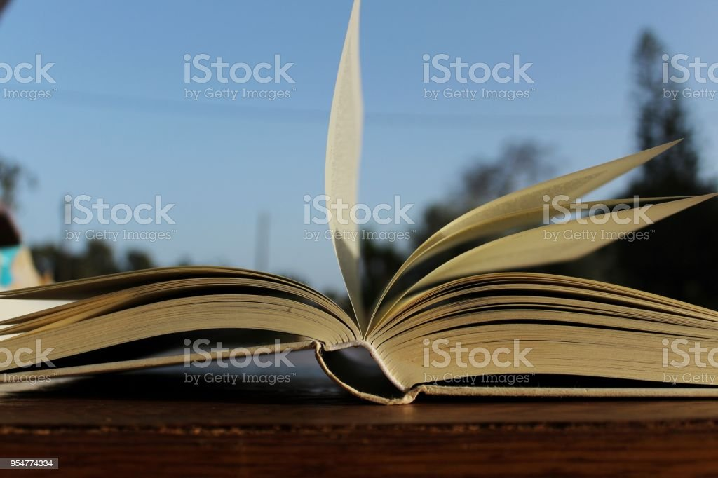 Open book and leafed by the wind stock photo