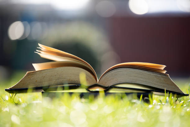 Open book in green grass. stock photo