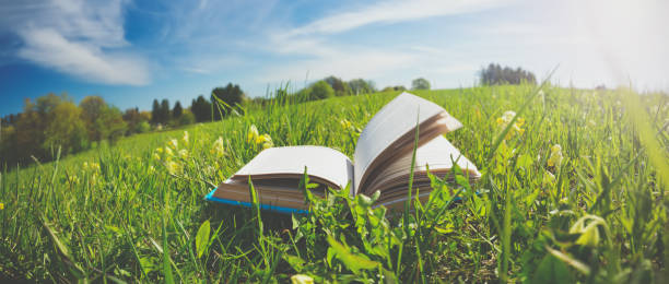 Open book in the grass on the field stock photo
