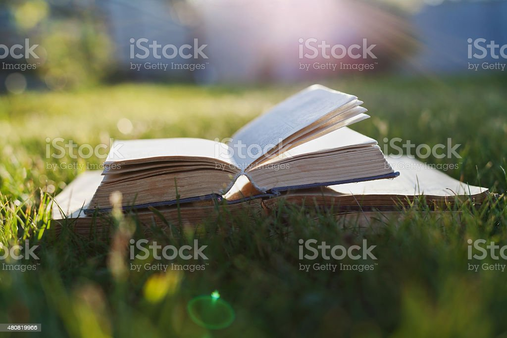 Open book on a green grass against beautiful sunset lights stock photo