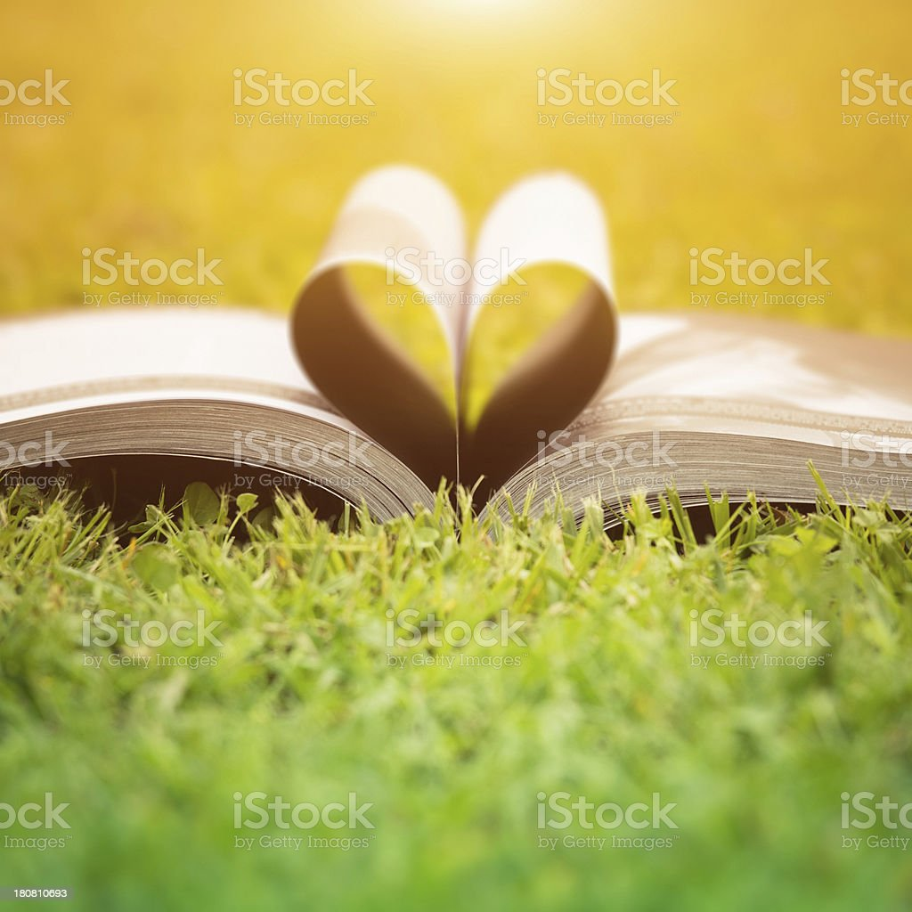 open book on the grass royalty-free stock photo