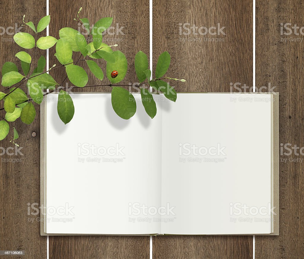 open book on wood with leaf and ladybug royalty-free stock photo
