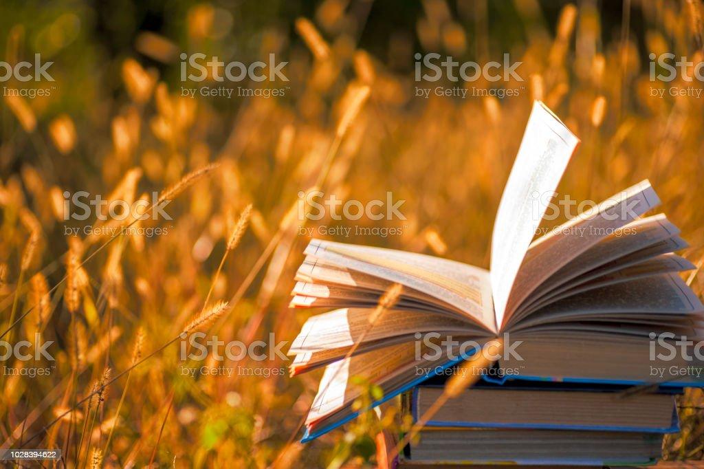 Livre ouvert sur la table en bois sur fond naturel. Flou artistique - Photo